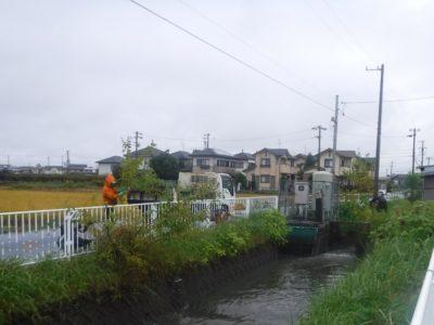 羽島市内での伐採、草刈のボランティア